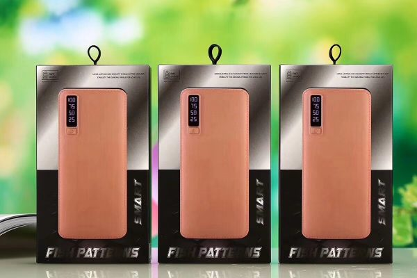 Power Bank BASICS F20 20000mAh
